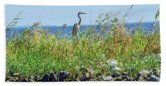 Great Blue Heron On Jetty Hand Towel