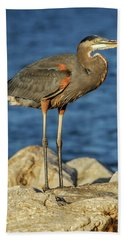 Great Blue Heron On Rock Hand Towel