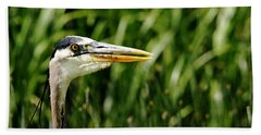 Hand Towel featuring the photograph Great Blue Heron Portrait by Debbie Oppermann