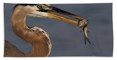 Great Blue Heron W/catfish Bath Towel
