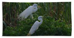 Great Egret Displays Windy Mating Plumage 2 Hand Towel