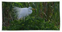 Great Egret Displays Windy Plumage Hand Towel