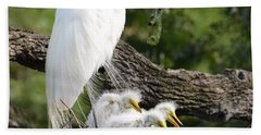 Great Egret Family  Bath Towel by Richard Bryce and Family