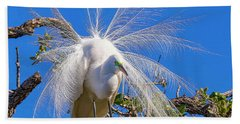 Great Egret In Breeding Plumage Hand Towel