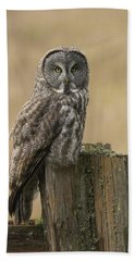 Great Gray Owl Hand Towel by Doug Herr
