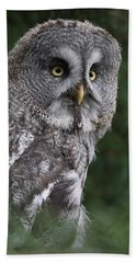 Great Grey Owl Bath Towel