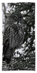 Great Grey Owl Portrait Hand Towel
