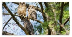 Great Horned Owl Family Hand Towel