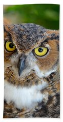 Great Horned Owl  Bath Towel by Richard Bryce and Family