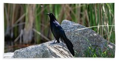 Great-tailed Grackle Hand Towel