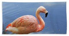 Greater Flamingo Bath Towel by Afrodita Ellerman