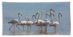 Greater Flamingos, India Bath Towel