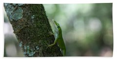Green Anole Bath Towel by Christopher L Thomley