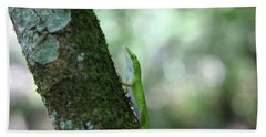Green Anole Climbing Bath Towel by Christopher L Thomley