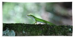 Green Anole Posing Bath Towel by Christopher L Thomley