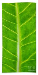 Green Botany -  Part 2 Of 3 Hand Towel