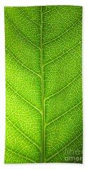 Green Botany -  Part 3 Of 3 Hand Towel