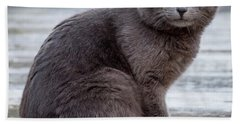 Green Eye Stare Cat Square Bath Towel by Terry DeLuco