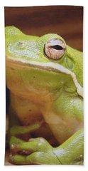 Green Frog Bath Towel by J R Seymour