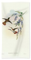 Bath Towel featuring the painting Green-fronted Hummingbird Amazilia Viridifrons by John and Elizabeth Gould