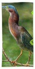 Bath Towel featuring the photograph Green Heron Pose by Deborah Benoit