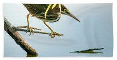 Green Heron Sees Minnow Bath Towel by Robert Frederick