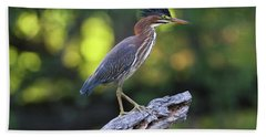 Green Heron Stump Bath Towel