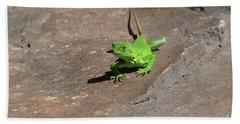 Green Iguana Creeping Across A Rock Hand Towel by DejaVu Designs