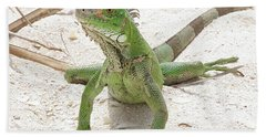 Green Iguana On A Sandy Beach Hand Towel by DejaVu Designs