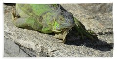 Green Iguana Resting In The Sun Bath Towel by DejaVu Designs