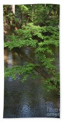 Bath Towel featuring the photograph Green Is For Spring by Skip Willits