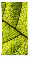 Green Leaf Closeup Bath Towel