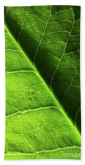 Hand Towel featuring the photograph Green Leaf Veins by Ana V Ramirez
