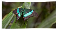 Green Moss Peacock Butterfly Hand Towel by Peter J Sucy