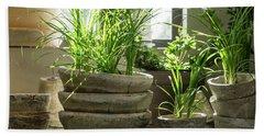 Green Plants In Old Clay Pots Bath Towel