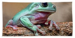 Designs Similar to Green Tree Frog