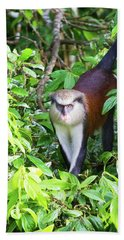 Grenada Monkey Hand Towel