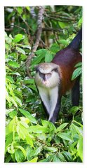 Grenada Monkey Hand Towel by Arthur Dodd