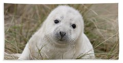 Grey Seal Pup Bath Towel