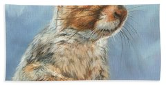 Bath Towel featuring the painting Grey Squirrel by David Stribbling