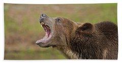 Grizzly Bear Growl Hand Towel