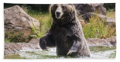 Grizzly Bear Wading Hand Towel