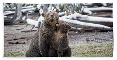 Grizzly Cub Playing With Mother Hand Towel
