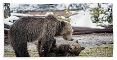 Grizzly Cub With Mother Hand Towel