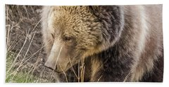 Bath Towel featuring the photograph Grizzly Mama by Yeates Photography