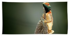 Ground Agama Sunbathing Hand Towel