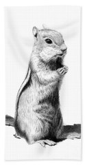 Ground Squirrel Hand Towel