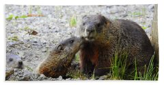 Hand Towel featuring the photograph Groundhog Kiss by Betty-Anne McDonald