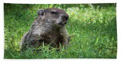 Groundhog Posing  Bath Towel