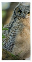 Growing Into A Great Horned Owl Hand Towel